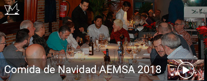 Comida de Navidad AEMSA 2018 y felicitación aniversario PEMSA